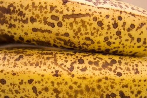 Способы использования банановой кожуры