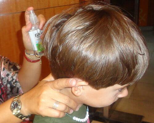 Как избавиться от вшей и гнид естественным путем