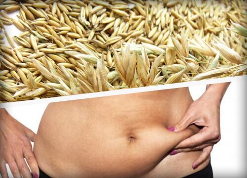 10 продуктов для сжигания жиров