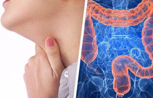 Какая связь между заболеваниями горла и кишечника