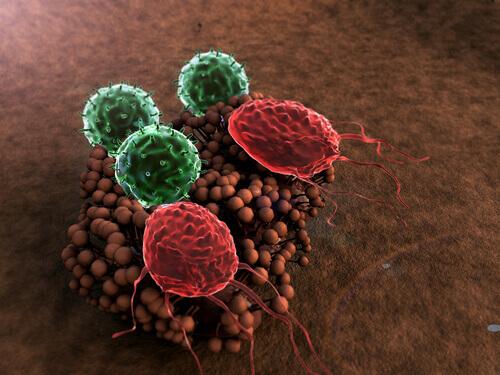 5 симптомов ослабленной иммунной системы