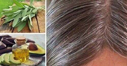 Причины и натуральные средства против седых волос