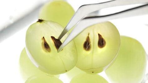 8 лечебных преимуществ виноградного семени