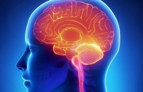Рассеянный склероз: многоаспектная болезнь