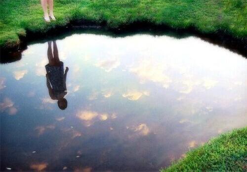 "Откройте для себя ""Закон зеркала"""