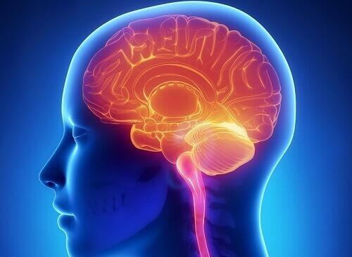 11 ежедневных привычек, которые вредят мозгу